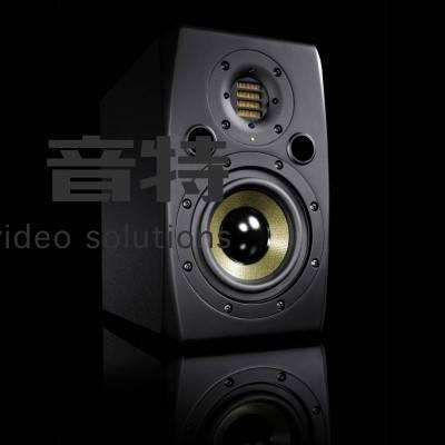 ADAM AUDIO S2X 二分频监听音箱